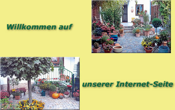 G rtnermeister antonello cao gartenbau und landschaftsbau in ludwigshafen - Gartenbau ludwigshafen ...